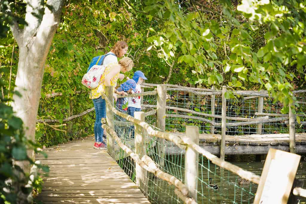 Discovery Walk at Priory Farm-06204
