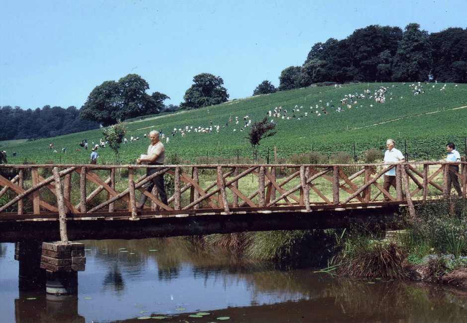 The completed bridge, allowing us to get customers from Lakefield car park to the picking fields.