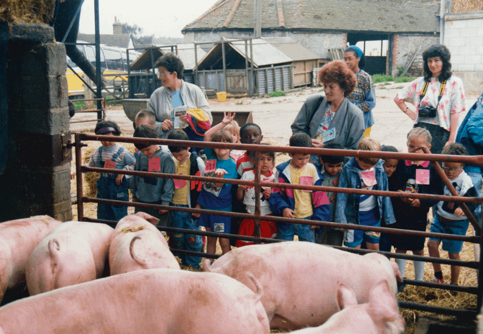 London schoolchildren visiting the farm, with the Farm Shop entrance in the background.