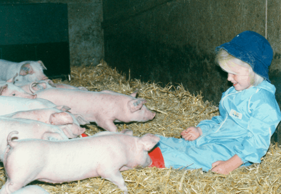 Georgie, grandaughter, making friends with baby pigs.