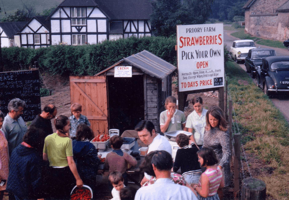 About Priory Farm, strawberry selling.