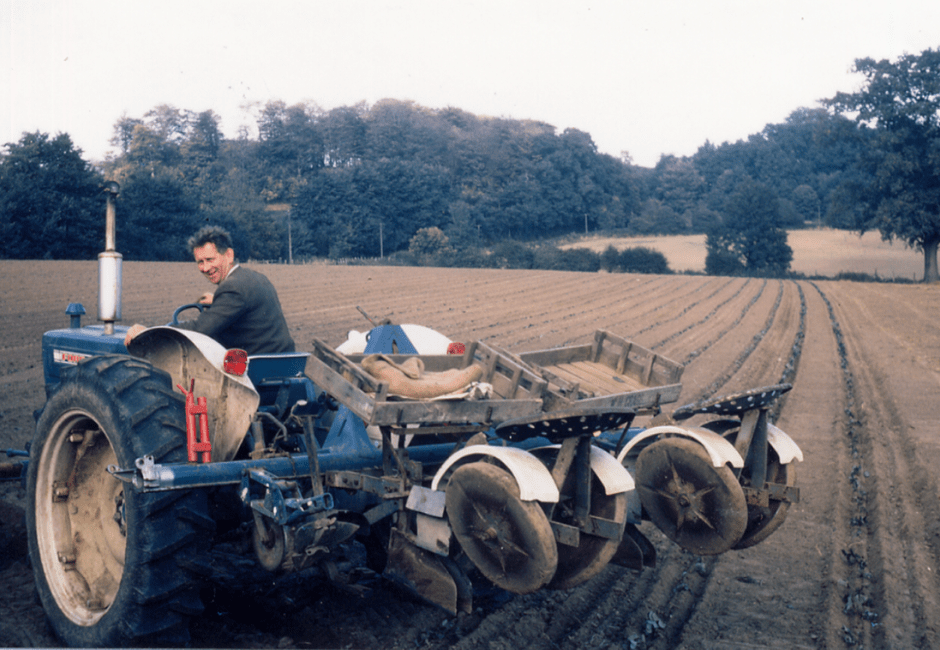 Alan Turner planting the first row of strawberries in October 1969