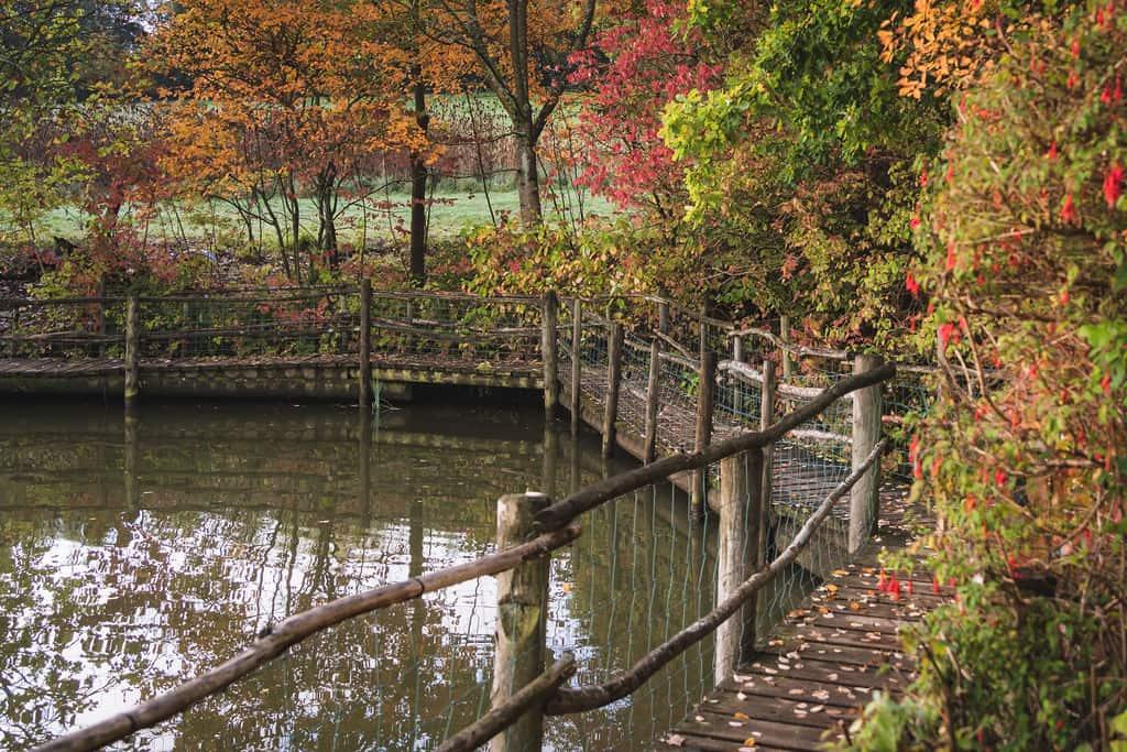 Autumn on the Priory Farm Estate