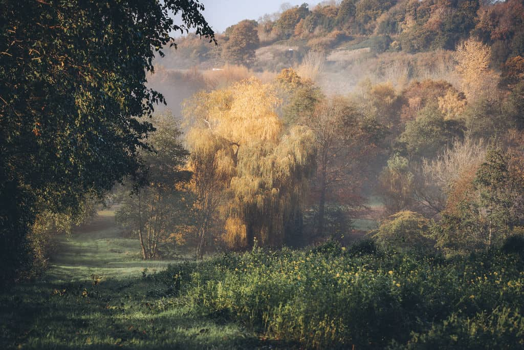 Priory Farm in the Autumn