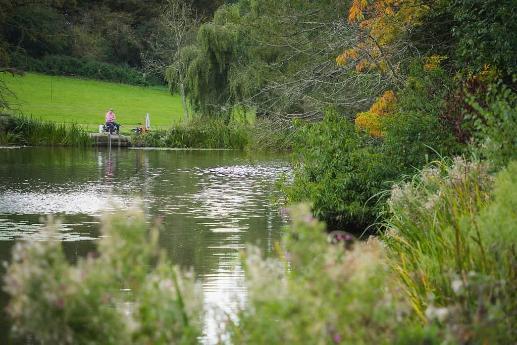 fishing lakes in Surrey