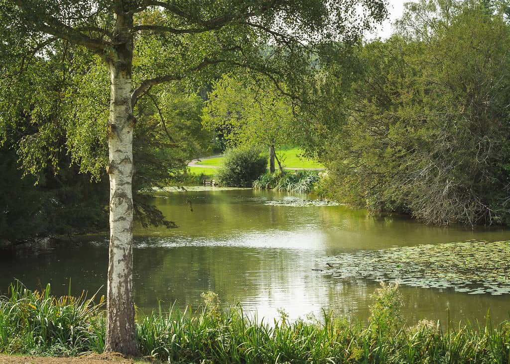 Priory-Farm-Fishing2020-06832