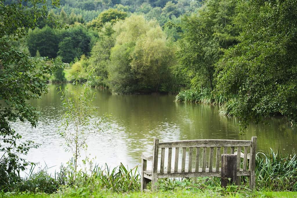 Priory-Farm-FishingSept2020-06326