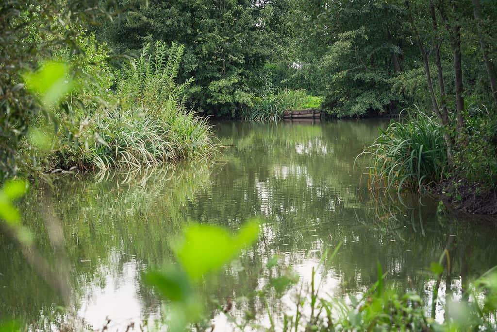 Priory-Farm-FishingSept2020-06355
